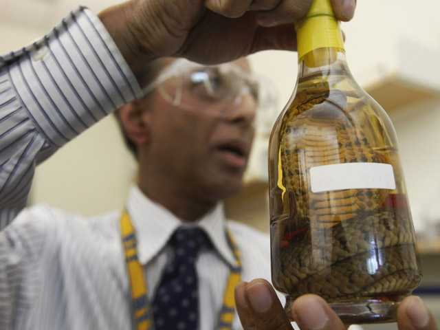 In this April 19 photo, Dr. Abdul Mabud holds up a bottle of snake liquor from east Asia at a laboratory, in Beltsville, Md.
