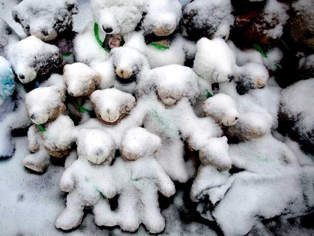 Snow-covered stuffed animals with photos attached sit at a memorial in Newtown, Conn.