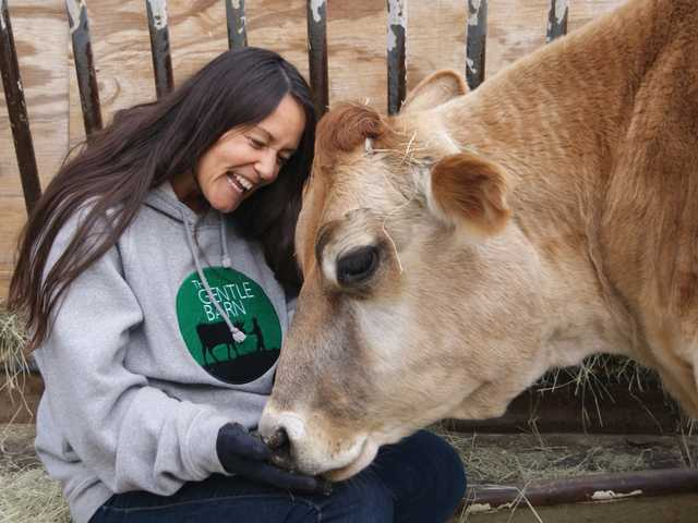 "Gentle Barn co-founder Ellie Laks takes some time to show some appreciation to Buttercup the cow, which she says serves at the foundation's ""incredible ambassador."""