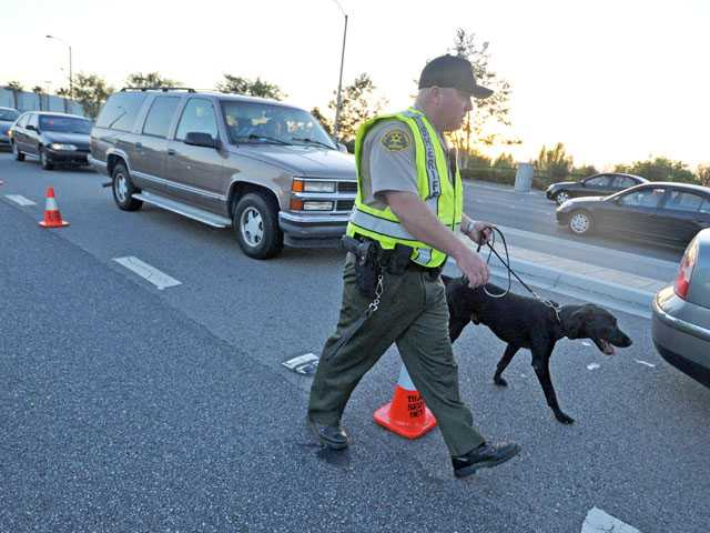City DUI checkpoint set for Feb. 8