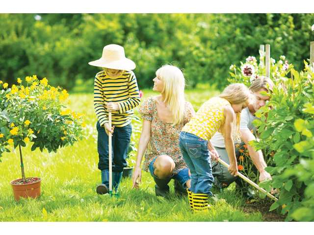 "Engage children in gardening by planting something ""fun"" gardening experts suggest. Pumpkins are a perfect ""kid-friendly"" gardening staple."