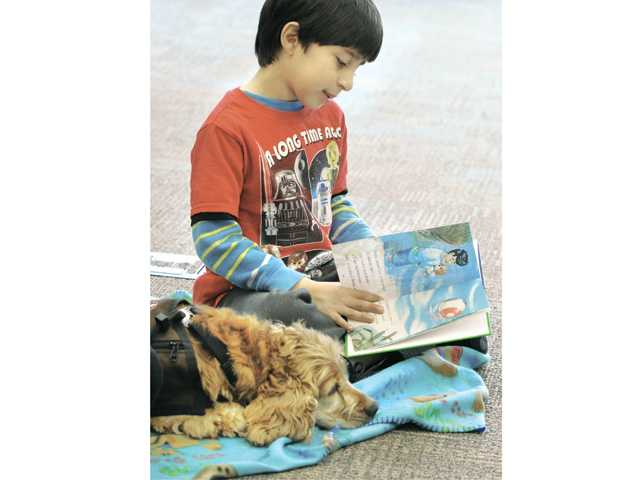 "Jayden Correa, 6, reads aloud from his third-grade-level book, ""Little Lucy"" to Sofie, a 7-year old cocker spaniel at the read to dogs event held at the Newhall Library on Saturday. (Dan Watson/The Signal)"