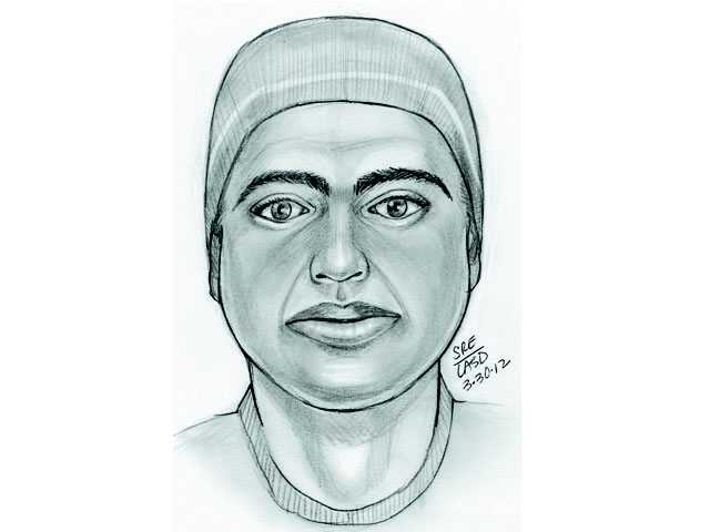 Artist's rendering of suspect in March 2012 attack on a woman in Canyon Country.