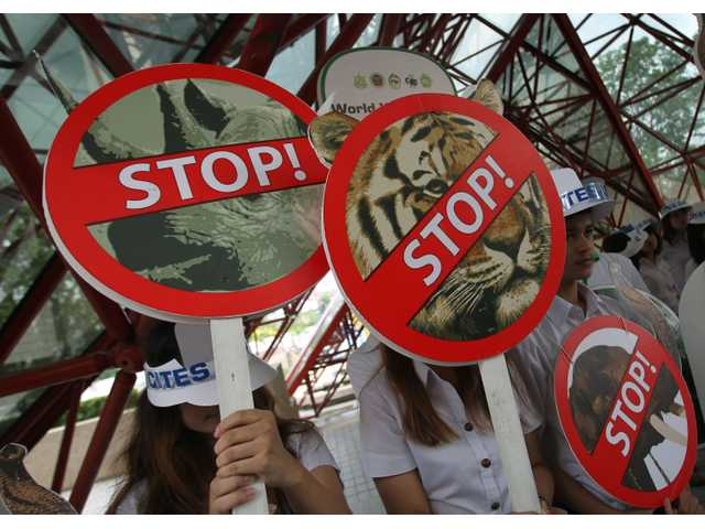 Thai activists hold signs against illegal wildlife trade during the Convention on International Trade in Endangered Species, or CITES, in Bangkok.