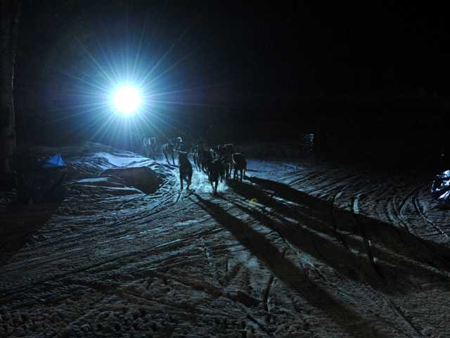 Four-time Iditarod champion Martin Buser arrives first at the Yukon River in Anvik, Alaska during the Iditarod Trail Sled Dog Race, early Friday. Sleep deprivation can cause hallucinations.