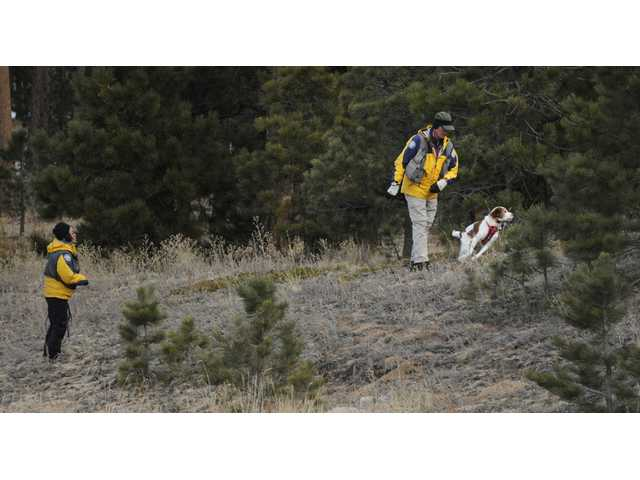 Searchers use a dog Wednesday to search the area around the Monument, Colo. home of Colorado Department of Corrections Executive Director Tom Clements. Clements was shot and killed Tuesday evening.