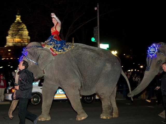 A performer waves as elephants with the Ringling Bros. and Barnum & Bailey show, walk on 3rd Street in front of the U.S. Capitol March 19.