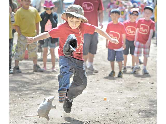 Hundreds participate in Cub Scout Cup