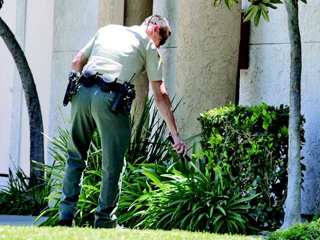 A Santa Clarita Valley Sheriff's deputy uses a baton as he searches for a gun in the bushes near the corner of Fahren Court and Sandy Drive in Canyon Country. A young man was arrested for brandishing a gun near that location on Friday.