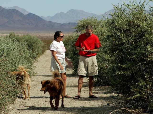 Donna and Larry Charpied walk in 2006 on their jojoba farm near Desert Center in Southern California's Mojave Desert, near a proposed dump site.