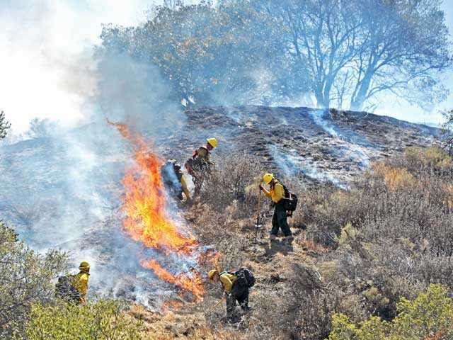 A hand crew works to extinguish a brush fire which rolled up a hill behind Madison Way in Val Verde on Monday. Signal photo by Jonathan Pobre