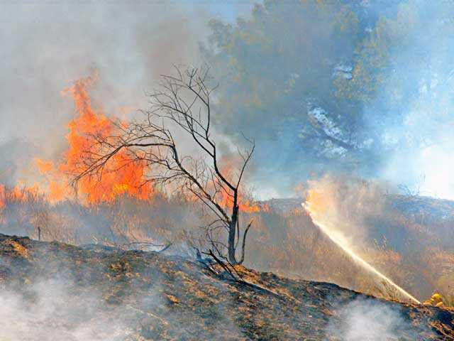 Flames burn a hillside in Val Verde on Monday. Photo by Rick McClure/For The Signal