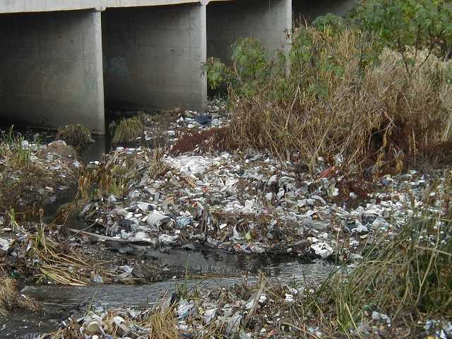 Plastic bags clutter Los Angeles River.  Courtesy photo