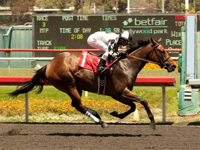 Doinghardtimeagain, jockey Rafael Bejarano up, races to win the 68th running of the Grade II, $150, 000 Hollywood Oaks horse race at Betfair Hollywood Park in Inglewood today.