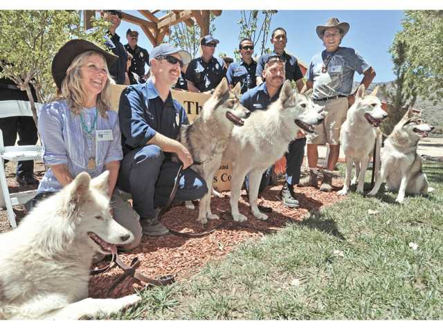 Firefighters pose for photos with Shadowland Foundation resident wolves and co-founders Colette Pondella, left, and Paul Pondella , right, at the Powerhouse Firefighters Appreciation Day event held at Shadowland Foundation in Lake Hughes on Saturday.