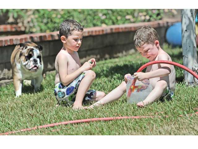 English bulldog Sammie looks on as 4-year-old brothers Tyler, left, and Brandon Brian of Castaic fill water balloons with their front yard hose on Friday. Signal photo by Dan Watson
