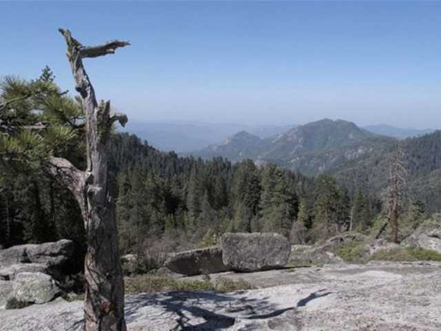 In this May 11, 2012 file photo, the view from Beetle Rock in Sequoia National Park is seen. In parts of the Sierra Nevada, the incursion of trees is sucking marshy meadows dry. Glaciers are melting into mere ice fields. Wildflowers are blooming earlier. And the optimal temperature zone for Giant Sequoias is predicted to rise several thousand feet higher.