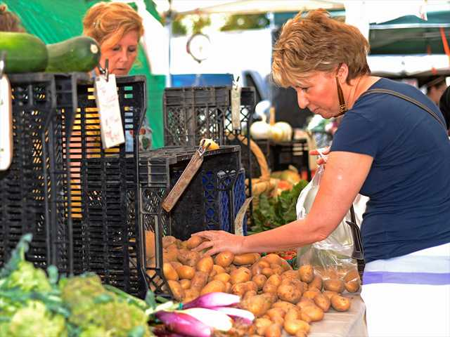 Sofya Gelberg sorts through potatoes as she shops at the Bunnytree stand during the 20th Anniversary of the Farmer's Market at College of the Canyons on Sunday. Gelberg has been shopping at the market for over 17 years and says the Bunnytree stand is her favorite. Photo by Steve Palma for The Signal.