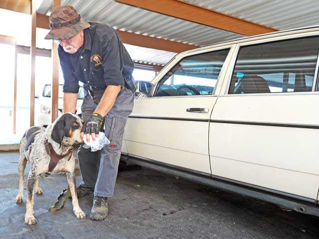 Ted Hamm takes a pad with a scent from a seat in Mickey Owen Gray's car to help tracking dog Bojangles search for Gray, who was found to be at a regional hospital. Signal photo by Jonathan Pobre