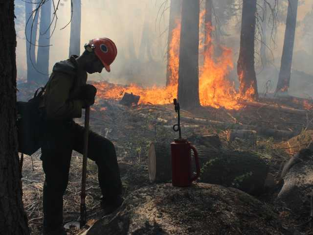 A Hotshot fire crew member rests near a controlled burn operation at Horseshoe Meadows, as crews continue to fight the Rim Fire near Yosemite National Park.