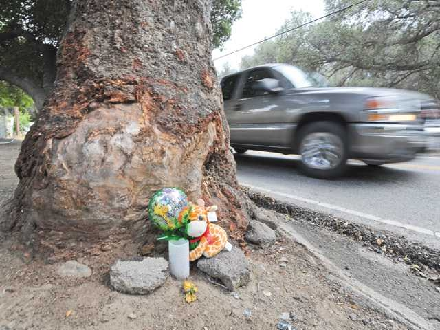 "This file photo shows a ""Happy Birthday"" balloon, a candle and a stuffed animal sitting beside an oak tree at the site of the crash where Dakota DeMott was killed on Sand Canyon Road."