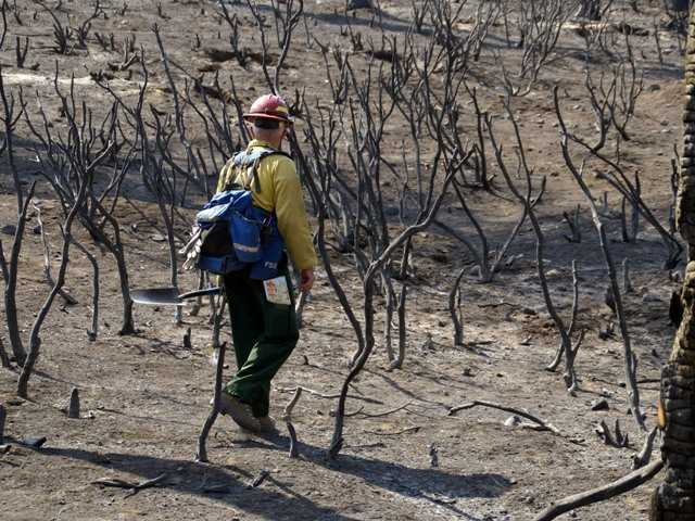 Nearly 40 percent of Rim Fire land a 'moonscape'