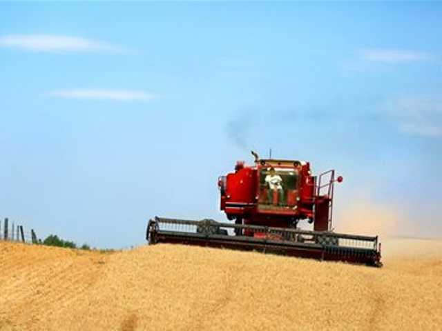 In this July 24, 2013 file photo, a combine harvests wheat along the Oregon-Washington border, southwest of Walla Walla, Wash.