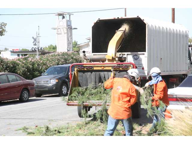 UPDATE: Wind downs power lines, topples trees in SCV