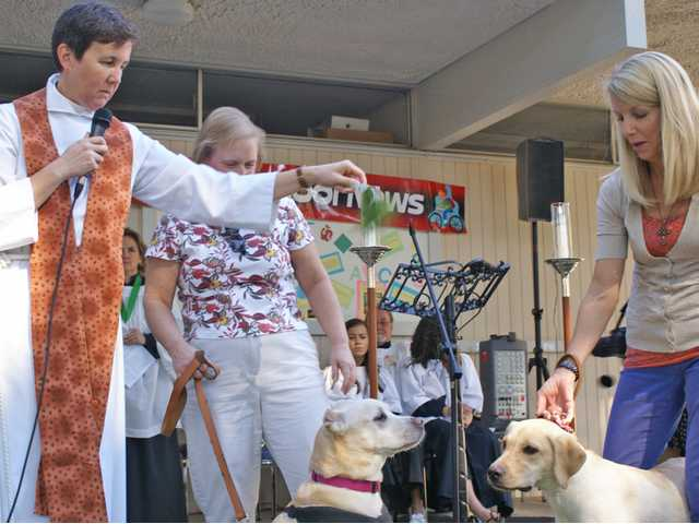 The Rev. Kelly O'Connell of St. Stephen's Episcopal Church blesses dogs Honey (left) and Shelby, pictured here in front of their respective owners Monica Foster and Shari Schlaman (far right), in a special Blessing of the Animals service Sunday. Signal photo by Jim Holt