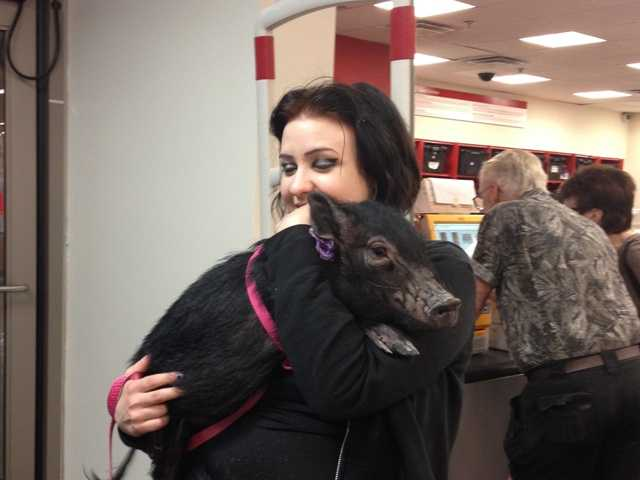 Alesia Humphries ran into this young woman and – her hog – inside the Target in Valencia on Oct. 18.  Alesia Humphries/Courtesy photo