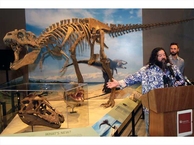 A new species of tyrannosaur unearthed in Grand Staircase-Escalante National Monument in southern Utah is revealed at the Utah Museum of Natural History Museum in Salt Lake City by Dr. Mark Loewen and Jospeh Sertich with the Denver Museum of Nature and Science on Wednesday.