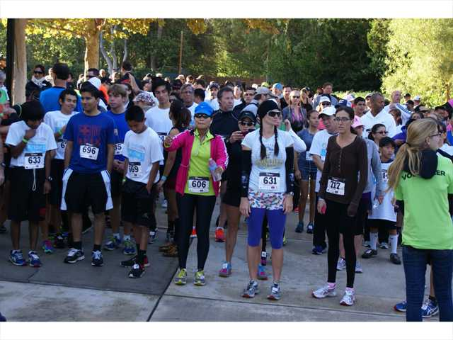 Inaugural HandsOn run draws hundreds