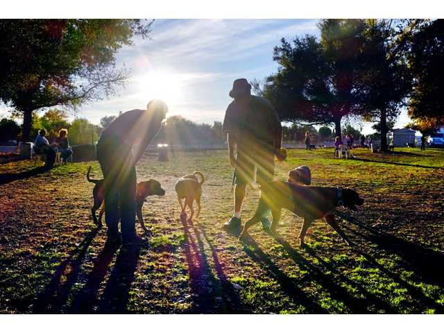 In this Sunday photo, visitors and their dogs enjoy a sunny afternoon at the Sepulveda Basin Dog Park in Encino.