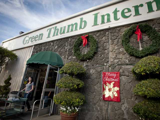 A guest exits the Green Thumb nursery in Newhall, where more than 100 Christmas trees were stolen over the weekend. Signal photo by Charluie Kaijo.