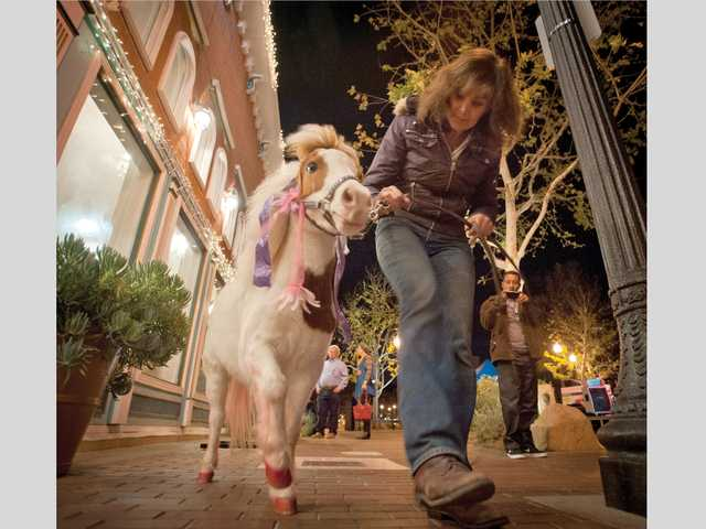 Nancy Degan's miniature horse, Cherry, performs tricks on Main Street Thursday night. Signal photo by Charlie Kaijo.