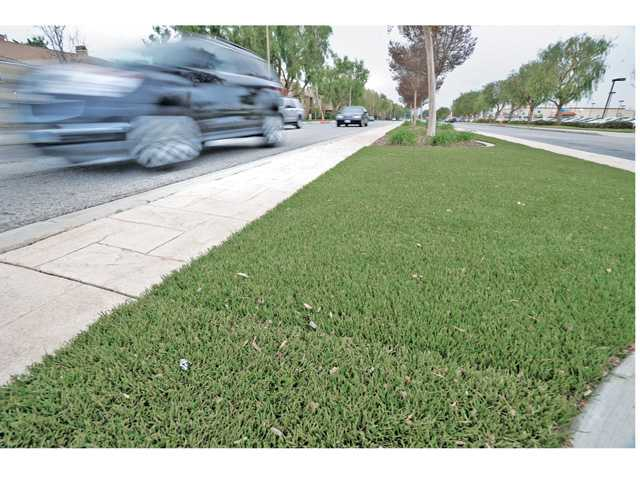 The faint line of a seam can be seen in artificial grass on the center median on Magic Mountain Parkway between Railroad Avenue and Valencia Boulevard as cars pass by in Valencia. Photos by Dan Watson.