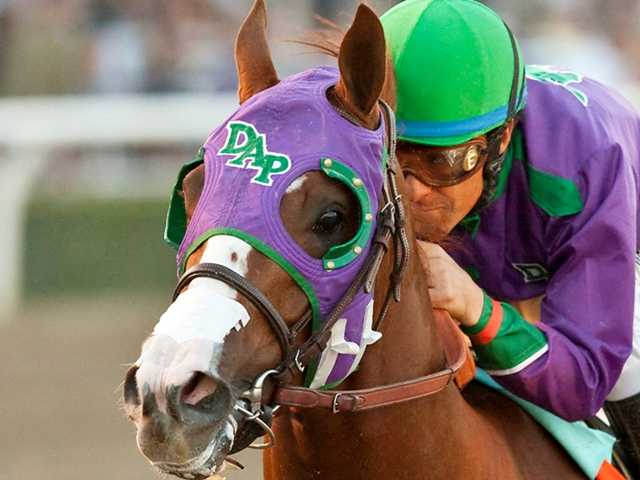 If California Chrome becomes the first horse to sweep the Triple Crown in 36 years, a Calif. man will win $1 million. Above, a photo by Benoit Photo of the horse and jockey Victor Espinoza.