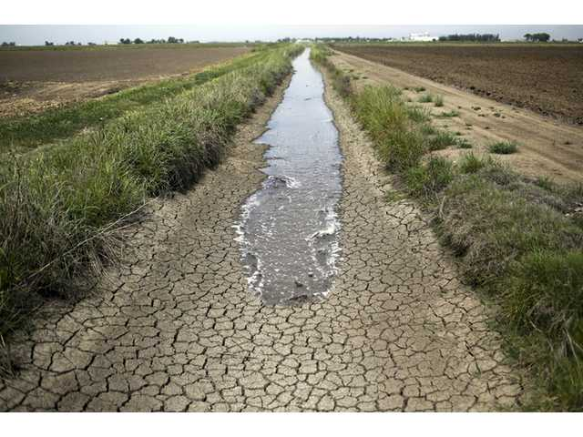 In this May 1, 2014 photo, irrigation water runs along a dried-up ditch between rice farms in Richvale, Calif. In dry California, water is fetching record high prices. As drought has deepened in the last few months, a handful of special districts in the state's agricultural heartland have made millions through auctions of their private, underground caches that go to the highest bidders. With the unregulated, erratic water market heating up in anticipation of the hot summer months, the price is only going up. In the last five years alone, it has grown tenfold, shooting to as much as $2,200 an acre foot. (AP Photo/Jae C. Hong, FILE)