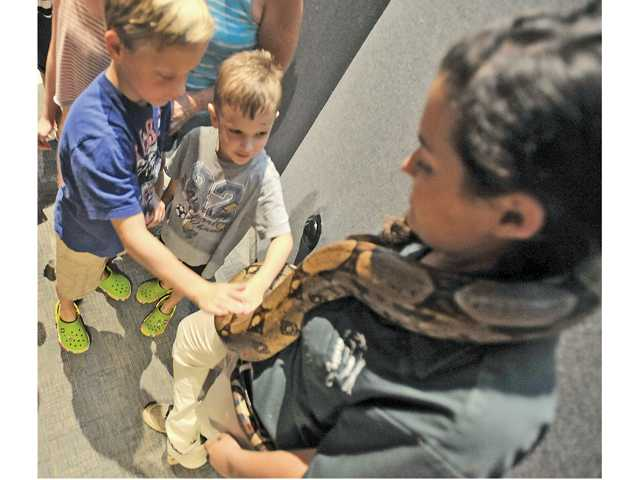 Jonah Onder, 7, left, and brother Eli Onder, 5, right, pet a Colombian boa named Princess Jasmine as wildlife instructor Ryane Parkins watches on Wednesday. Signal photo by Katharine Lotze
