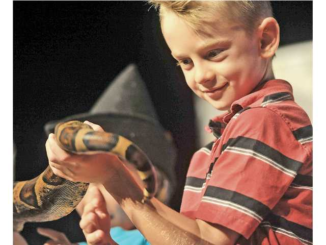 Hayden Cianessi, 7, holds the tail of Princess Jasmine, a Colombian boa, on stage Wednesday at the Wildlife Company's show, part of the Santa Clarita Public Library's Paws to Read summer reading program. Signal photo by Katharine Lotze