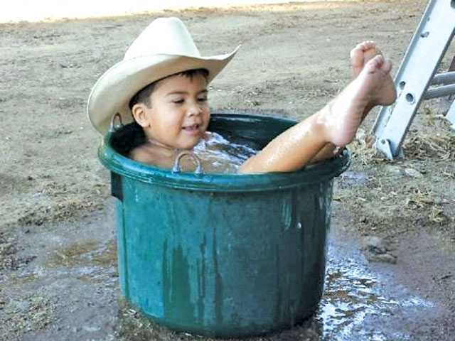 "Max beats the heat and relaxes in the dog's water bucket at his great grandfather ""PaPa's"" ranch in Placerita Canyon. Sandy  Paulin/Courtesy photo"