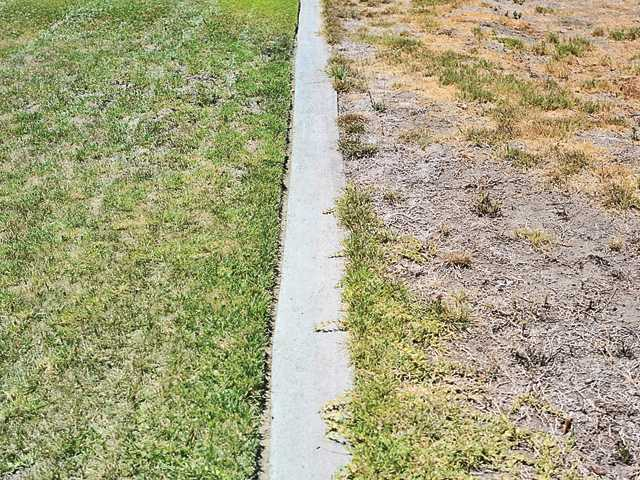 A stark white line - and an obvious difference in watering policy - separate two yards in a residential area of Canyon Country on Thursday. Signal photo by Katharine Lotze
