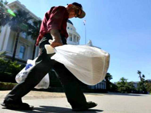 Assembly approves statewide ban on plastic bags