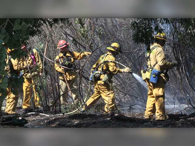 Deputies seek suspected arsonist after small brush fire near Canyon Country school