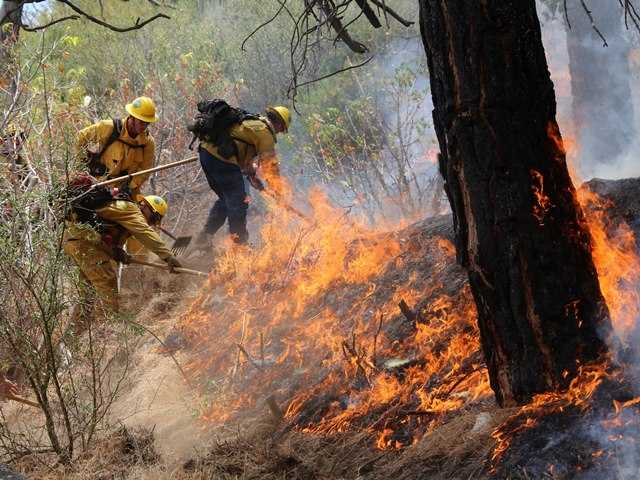 Quick response douses fire in heavy brush near Three Points