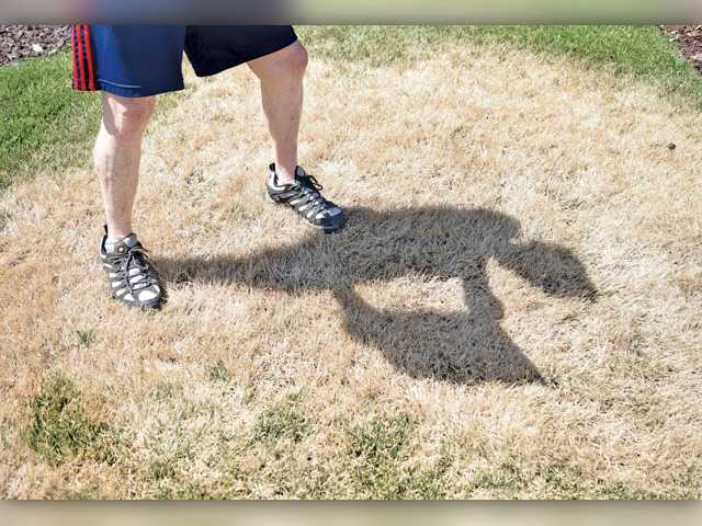 SCV HOAs ease lawn mandates in face of new laws
