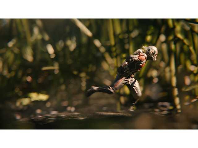 'Ant-Man': 3 points for parents