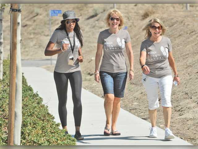Brady Walk raises funds for local charities