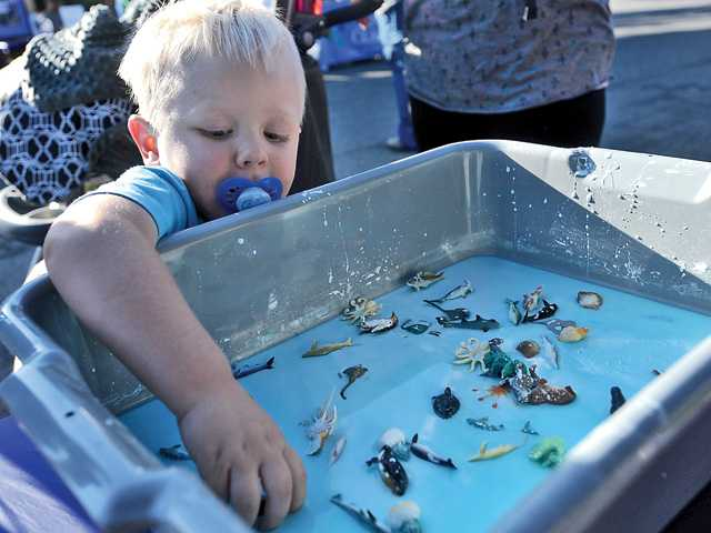 Hundreds turn out for fun in the sun at Canyon Country 'Summer Bash'