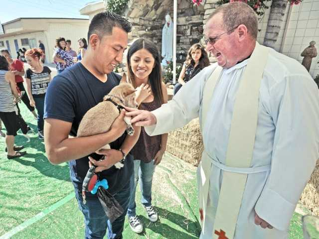 Animals blessed at Newhall church